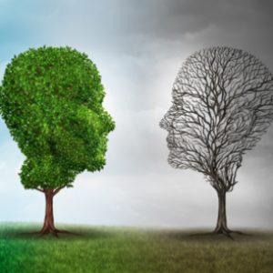 Cursa Máster en Mindfulness